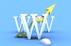 az év honlapja, it a cégben, pályázat