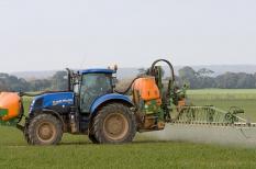 glifozát, greenpeace, mezőgazdaság, növényvédelem