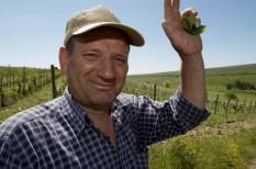 agrárkamara, jogszabály módosítás, mezőgazdaság