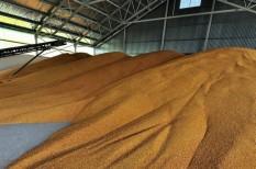 búza, kukoricaárak, mezőgazdasági árak