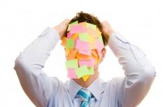 cégvezető, szervezet és vezetés, ügyvezetői felelősség