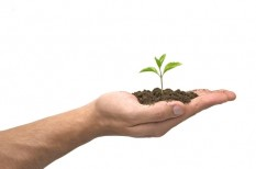 mezőgazdaság, növénytermesztés, uniós szabályozás
