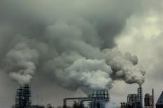 genetika, légszennyezés, légszennyezettség