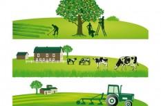 agrártámogatás, fenntartható gazdálkodás, uniós pénz
