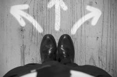cégalapítások, cégstatisztika, fizetési fegyelem