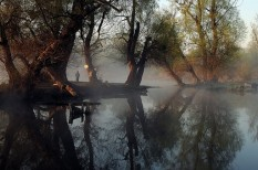duna, élővilág, környezetvédelem