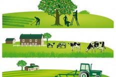 agrárfinanszírozás, agrárhitel, mezőgazdaság, mikrohitel, pénzszerzás, vállalati hitelek
