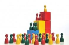 cégvezető, hatékony cégvezetés, szervezet és vezetés