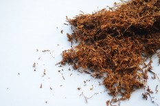 dohányipar, dohánytermelés, kkv pályázat