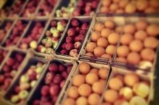 élelmiszeripar, élelmiszertermelés, ukrán válság