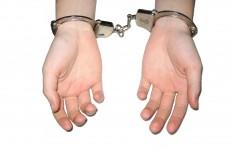 bűnözés, ensz, illegális, interpol