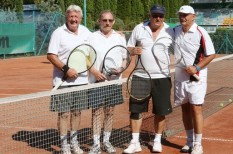 sport, társasági sport, társasági tenisz