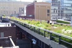 fenntartható fejlődés, városi kertészek, zöld városok
