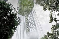 esőerdő, klímavédelem, környezetvédelem