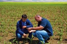 fiatal gazdák, mezőgazdaság, uniós források, vidékfejlesztés