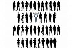 cégstruktúra, cégtörlések, cégvilág, csődeljárás, felszámolás, kényszertörlés