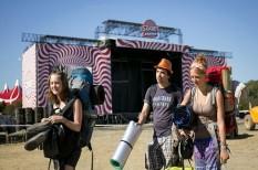 felmérés, fesztivál, kiskereskedelem, kultúra, szellemi tulajdon