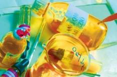 biotechnológia, divat, fogyasztóvédelem, pálmaolaj, tudomány, vegyipar