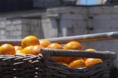 élelmiszer-értékesítés, élelmiszerbiztonság, fogyasztóvédelem