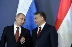 kereskedőház, külpiaci terjeszkedés, orosz piac, oroszország