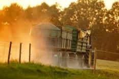 élelmiszertermelés, fenntartható termelés, mezőgazdaság