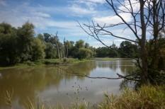 árvíz, aszály, biodiverzitás, környezetvédelem, mezőgazdaság, természetvédelem