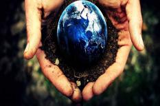 a föld órája, környezetvédelem, wwf