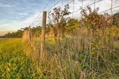 agrár, egészség, fogyasztói bizalom, kemikália, mezőgazdaság, monsanto, vegyszer