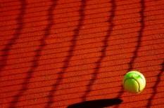 csók tenisz, sport, társasági sport