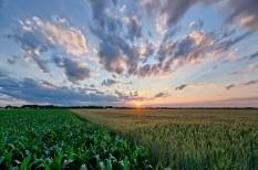 környezetvédelem, nemzeti földalap, termőföld