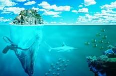 akvakultúra, állattenyésztés, élelmezés, élelmiszer, élelmiszeripar, élelmiszertermelés, étel, fenntartható, hal, halászat, népességnövekedés, óceán, ökológiai lábnyom, ökoszisztéma, tenger, túlnépesedés, urbanizáció, városiasodás