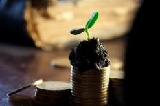 árfolyam, befektetés, befektetési tanácsok, ezüst, olajár, pénzpiac