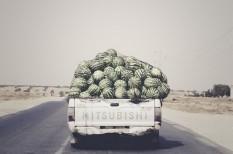 logisztika, szállítás, WebEye