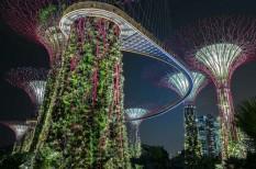 innováció, klímaváltozás, zöld városok