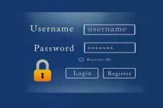 adatvédelem, hacker, internet biztonság, it-a cégben, it-biztonság, jelszó