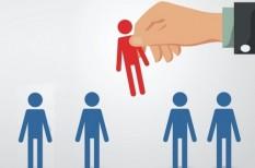 cégvezetési tanácsok, hatékony cégvezetés, kiválasztás, Nemes-Nagy Szilvia, Performia, személyiségteszt, toborzás
