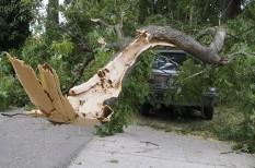 biztosítás, nyaraló, viharkárok