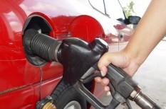 agrár, bioetanol, bioüzemanyag, IPCC, kukorica, mezőgazdaság, olaj, termőföld, tudomány