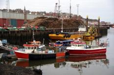 botrány, emberi jogok, ensz, halászat, illegális, munkajog