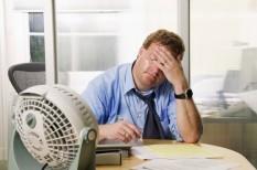 munkahelyi egészségvédelem, munkajog