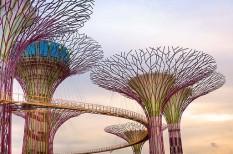 fenntartható fejlődés, klímavédelem, zöld városok