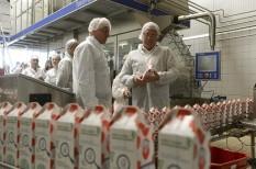 élelmiszeripar, export, tej