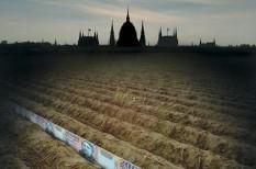 agrártámogatások, mezőgazdaság, uniós források