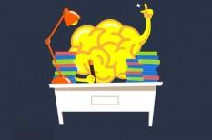 kkv marketing, könyvajánló, marketing tippek, neuromarketing, pszichológia