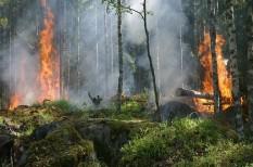 bányászat, környezetvédelem, nemzeti park