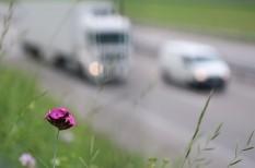 autó, klímaegyezmény, klímaváltozás, légszennyezés, SUV