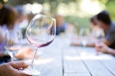 borászat, bortermelés, időjárás, mezőgazdaság