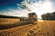 élelmiszeripar, élelmiszerpazarlás, mezőgazdaság
