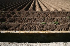 jogszabályváltozás, mezőgazdaság, termőföld