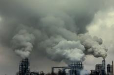 dekarbonizáció, emissziócsökkentés, energia, ensz, erdőirtás, fenntartható fejlődés, fosszilis energia, jövő, klímapolitika, klímavédelem, megújuló energia, párizsi klímaegyezmény, üvegházgázkibocsátás, zöld gazdaság